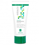 Andalou Naturals - Shower Gel Aloe Mint