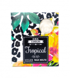 O.W.N Candles - Cera para quemador - Tropical - 4 uds.